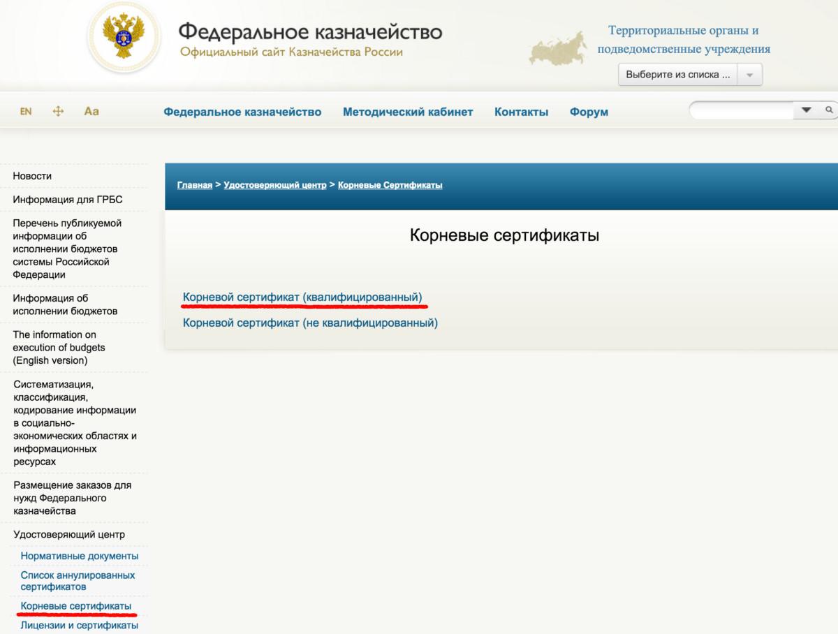 сертификат казанчейства